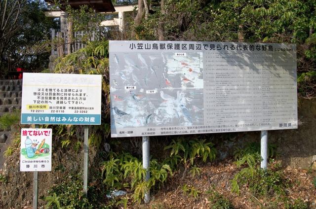 151231 遠州熊野三山 20