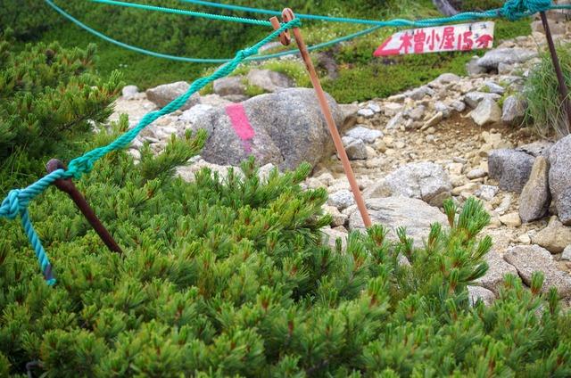 150816木曽駒ヶ岳17