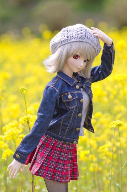 120415 巾着田 桜&菜の花 03