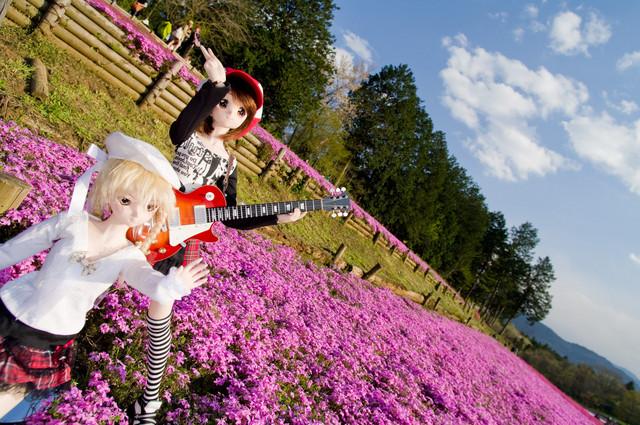 芝桜と舞と唯3