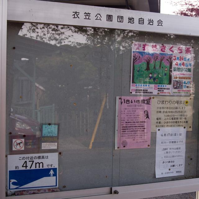 衣笠山公園02