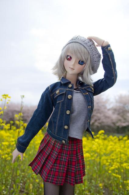 120415 巾着田 桜&菜の花 04