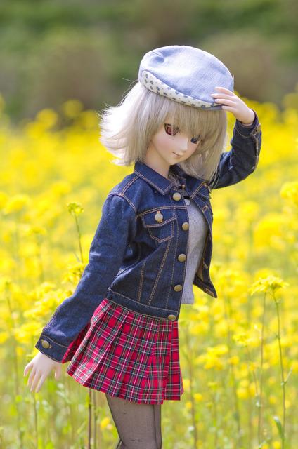 120415 巾着田 桜&菜の花 02