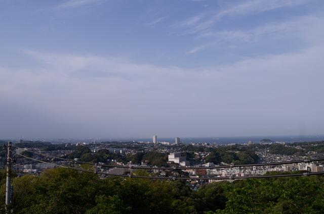 衣笠山公園07