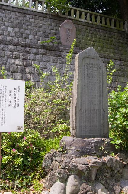 諏訪大神社(汐入)08