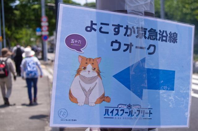 160611 横須賀はいふりイベント 10