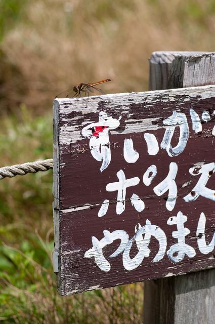 長野岐阜旅行35