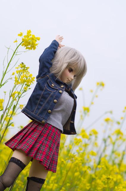 120415 巾着田 桜&菜の花 08