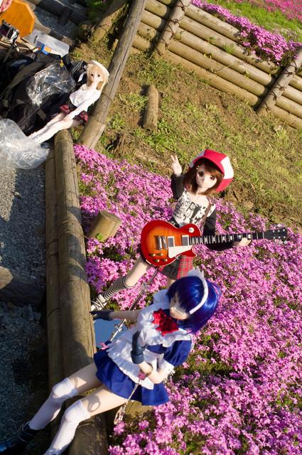 芝桜と3名