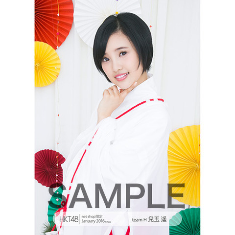 HK-245-1601-6929_p03_500