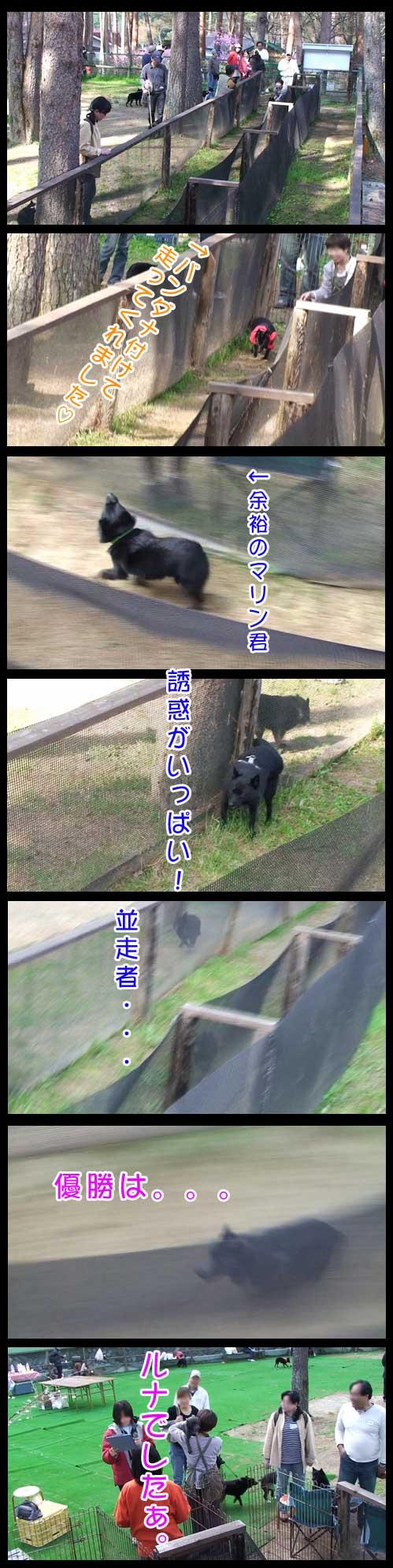 09c17abd.jpg