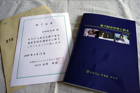 31038ca1.jpg