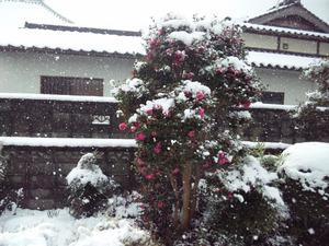 20141217雪景色