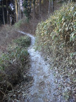 3)登山道の雪