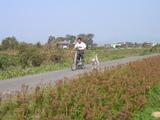 自転車引き