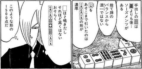 八崎安ブラフ2
