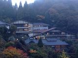 山口旅館�