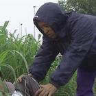 警視庁三係吉敷竹史シリーズ1.mpg_003915444