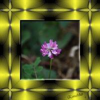 飾りタイル-蓮華草