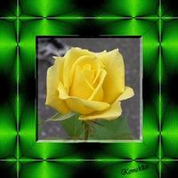 飾りタイル-黄色バラ