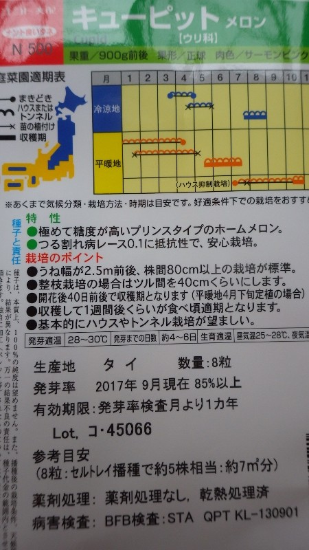 RIMG6881 (800x450)