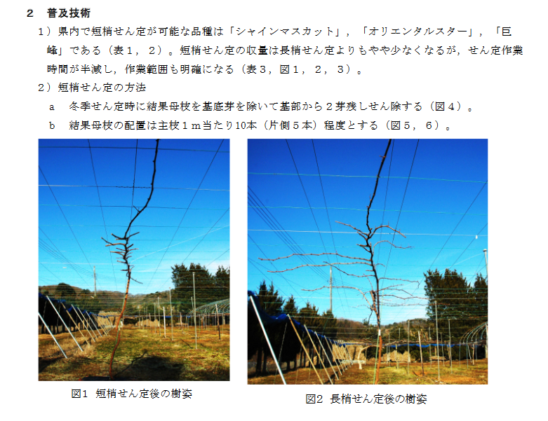Screenshot-2018-2-13 Taro-H22技術-園芸栽培-果樹(高 - 69599 pdf