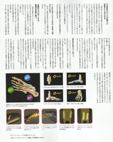 コピー 〜 CCF20110402_00004
