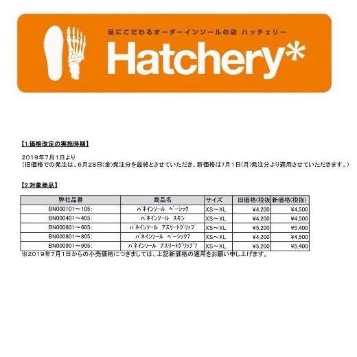 2019.6.192019.6.19バネインソール価格改正のお知らせ 【店x520