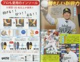 野球名鑑2015-2-1-2