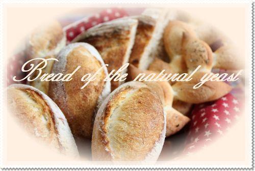 ホシノ酵母ハードパン