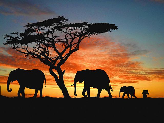 lost-toy-elephant-travels-around-world-photoshop-battle-8