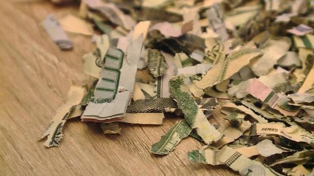 toddler-shreds-money-super-169