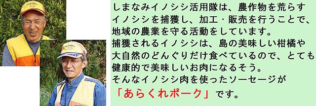 inoshishi_dtl.jpg