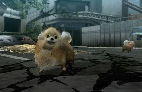 【衝撃画像】「どう見てもPS2やPS3の低予算ゲーム」な犬が発見されてネットで話題騒然!! → 想像以上にゲームの犬だったwwwwww