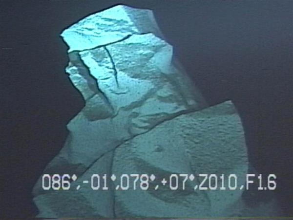 lif1410060024-p1