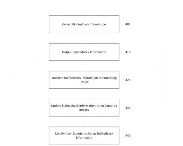 DS5-patent