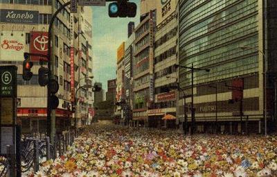 【すげぇ】SMAP『世界に一つだけの花』がついにオリコンデイリー1位に到達 購買運動がどんどん広がるの画像