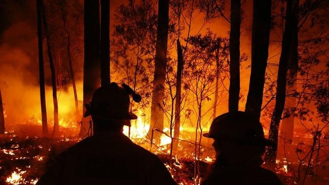 オーストラリアの森林火災では全豪オープンテニスにも影響 空気が悪すぎて選手ができず・・・
