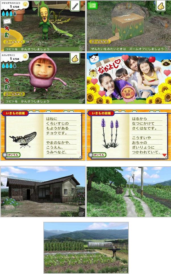3DS「こびとづかん-こびと観