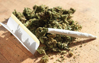 大麻の危険性はアルコールに比べてたった1/114でしかないことが判明!大麻が危険である科学的な根拠なし