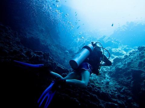 海底の集団