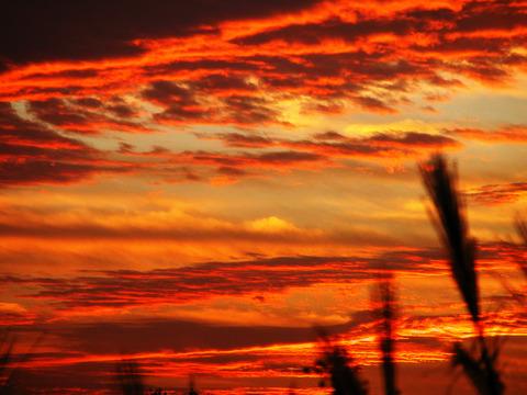 赤い空の恐怖