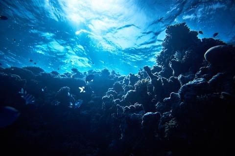 宇宙人と海