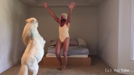 キャラの濃い飼い主さんと一緒に踊るミニチュアホース4