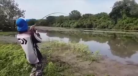 魚を釣ったらワニが付いてきた