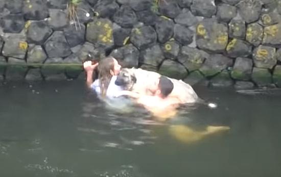 溺れた犬を助ける服を着たままの女性と服を脱いだ男性