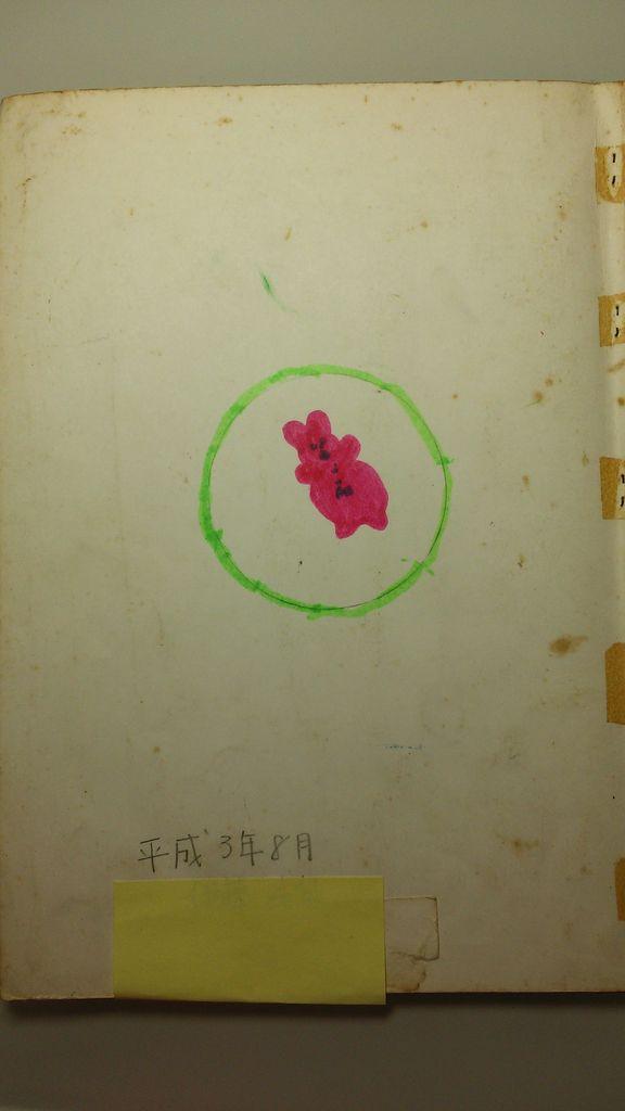 http://livedoor.blogimg.jp/hatsujiro/imgs/8/a/8aacc656.jpg