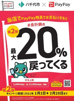 paypay2021-01-29