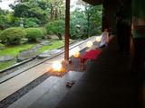椿寿明かり2