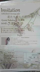 b9645966.jpg